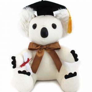 Graduation Koala